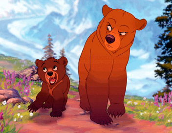 images frere des ours
